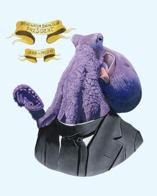 Octopuswithbanner8x10