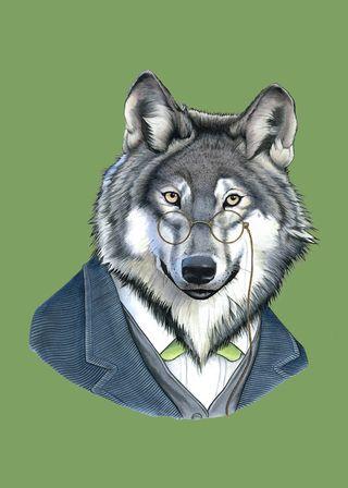 Wolf5x7