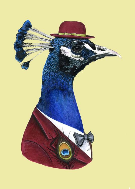 Peacock5x7